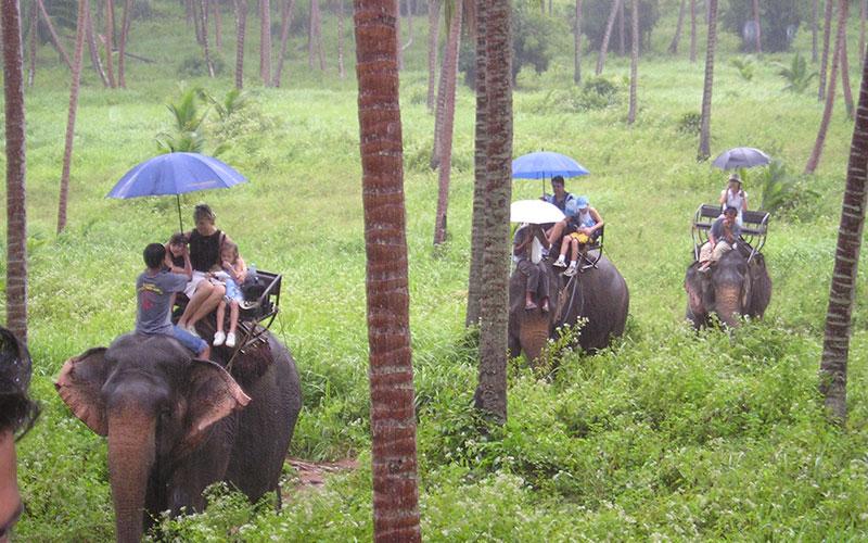 Thailand-Jungle-Tour